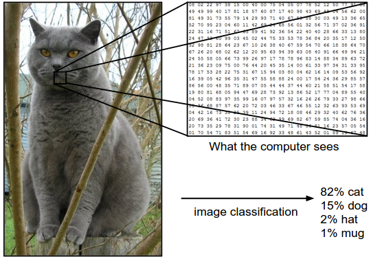 image classification by a computer